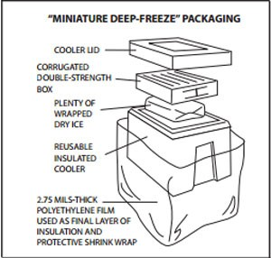 Blog-Image-Freeze-Packaging
