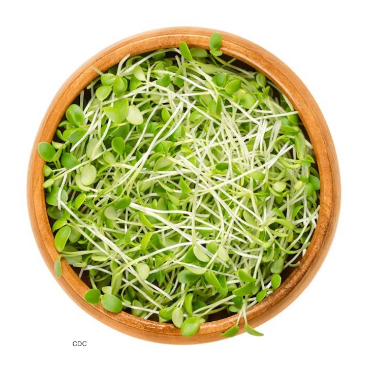E. coli Clover Sprouts is the Number Five Outbreak of 2020