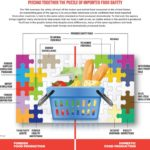 FDA Import Strategy Graphic v7