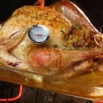 Food Thermometer Turkey