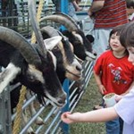 Keep Children Safe at Petting Zoos to Avoid HUS E. coli