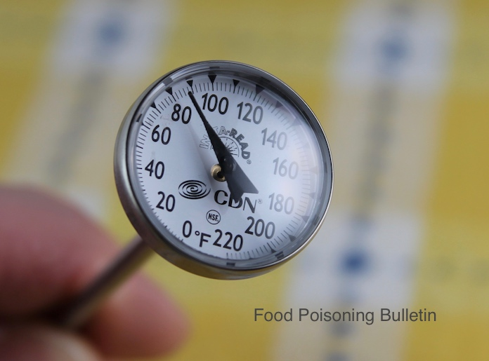Food Thermometer Study Proves Education Improves Kitchen Food Safety