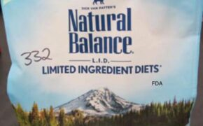 Natural Balance Cat Food Recalled For Possible Salmonella Contamination