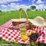 Going Hiking or Camping? Keep Your Food Safe