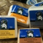 Raw Goat Milk Cheese Recalled in WI for E. coli O111