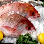 Oceana Finds Seafood Fraud Worldwide