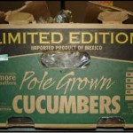 Cucumbers Serve Up Salmonella for Third Straight Summer