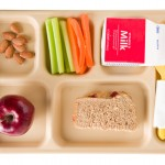 Congress to USDA: No Chinese Chicken in School Lunches