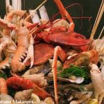 Washington Closes Shellfish Harvesting Areas
