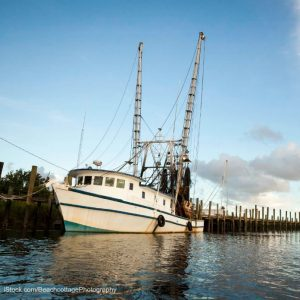 Shrimp Trawling Fishing Boat