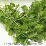 Texas Cyclospora Illnesses Linked To Cilantro From Restaurants and Grocery Store