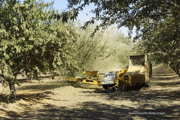 Drift From Poultry Farm Moved Aerosols Onto Nearby Almond Orchard