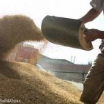 FDA Withdraws Approval of Arsenic in Animal Feed