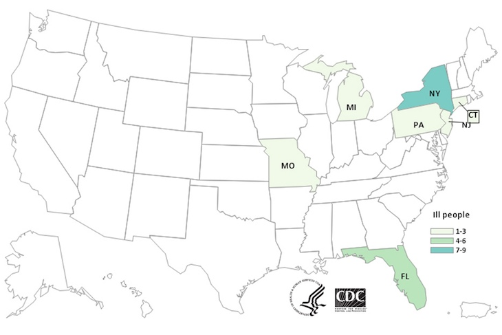 CDC Weighs In On Bison Burgers E. coli O103 and O121 Outbreak