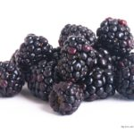 FDA Info on Fresh Thyme Woodman's Blackberries Hepatitis A Outbreak