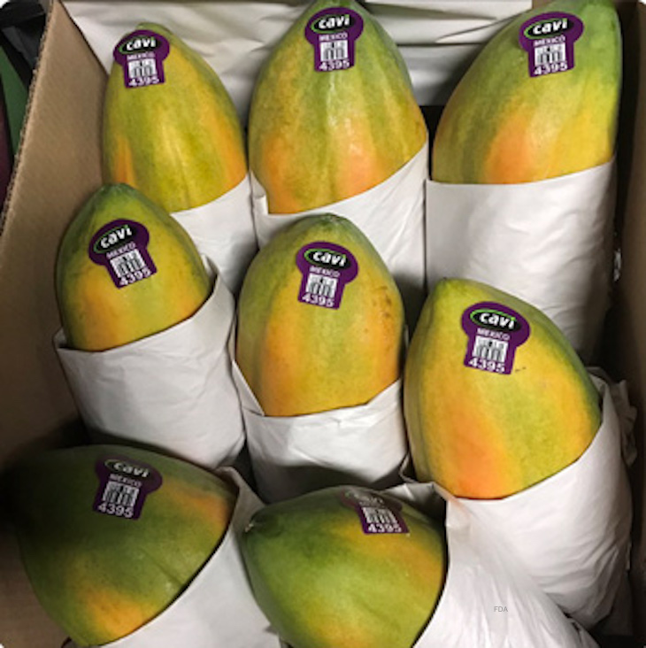 More Information on Salmonella Uganda Papaya Outbreak