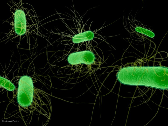 Possible E. coli Outbreak in New Jersey