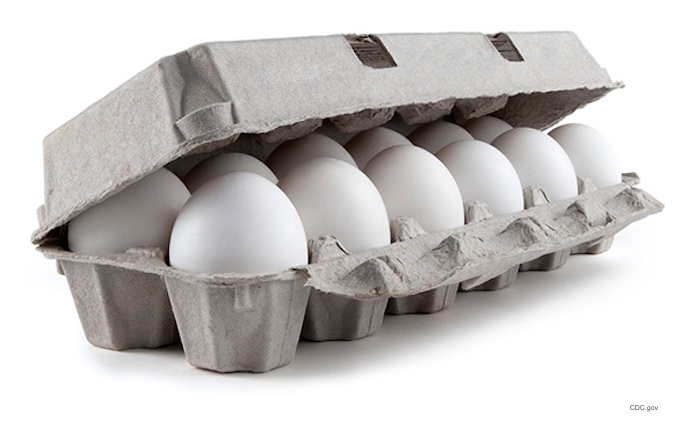 Rose Acre Farms Eggs Salmonella Outbreak