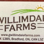 Gwillimdale Farms Onions Recalled in Canada For Salmonella