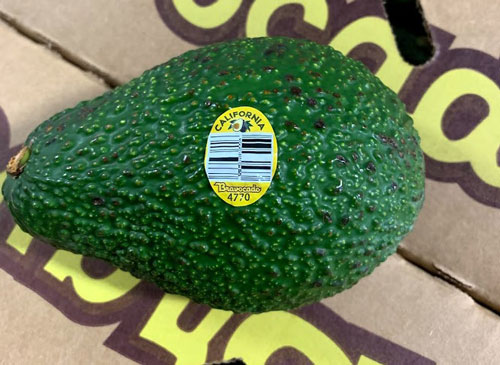 California avocado recall 2019: Everything you need to know