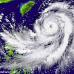 Food Safety Tips for Hurricane Arthur Victims