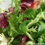 German Researchers Look for New Ways to Make Safer Salads