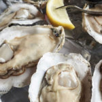 Pacific Oysters in Canada Recalled For Marine Biotoxin