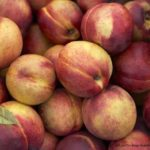 Peach Salmonella Outbreak Appears in Canada With 33 Sick