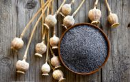 CSPI Calls on FDA to End Sales of Contaminated Poppy Seeds After 12 Americans Die