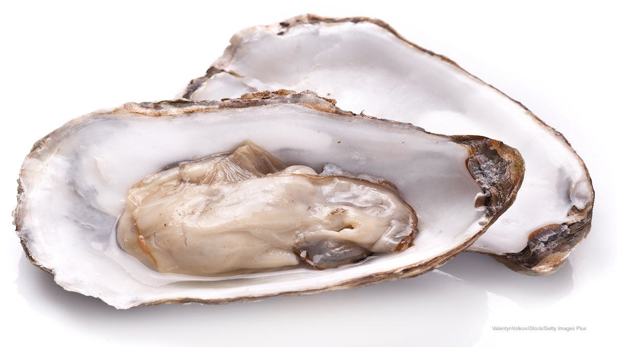 Raw Oysters Vibriosis
