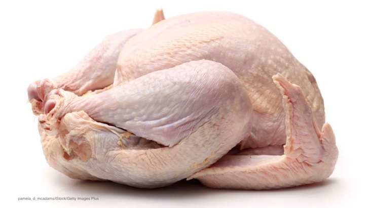 Antibiotic-Free or Organic Poultry Less Likely to Have MultiDrug-Resistant Bacteria