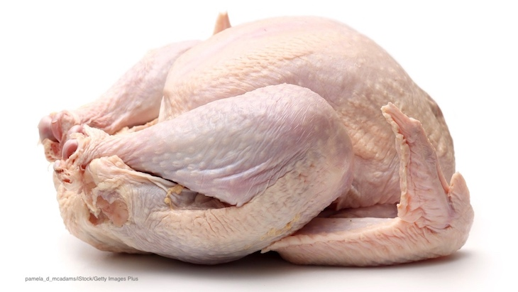 USDA Study: Bacteria From Raw Chicken Transferred to Salads