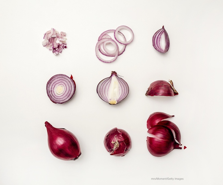 Canadian Salmonella Outbreak Linked to Red Onions Imported From U.S.