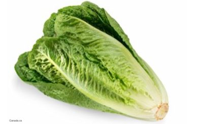 E. coli O157:H7 Outbreak Romaine Anvil Mountain Correctional Center