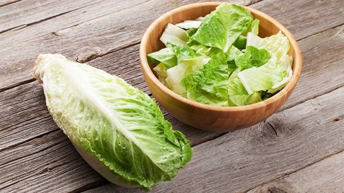 Romaine lettuce safe to eat in Canada, but the US may still be at risk Romaine lettuce safe to eat in Canada, but the US may still be at risk new pics