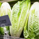 Romaine E. coli O157:H7 Outbreak Investigation