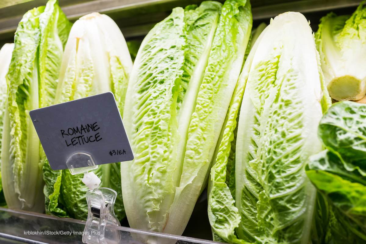 Romaine Lettuce California Counties E. coli O157:H7 Outbreak