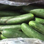 More Cucumbers Recalled for Salmonella in Canada