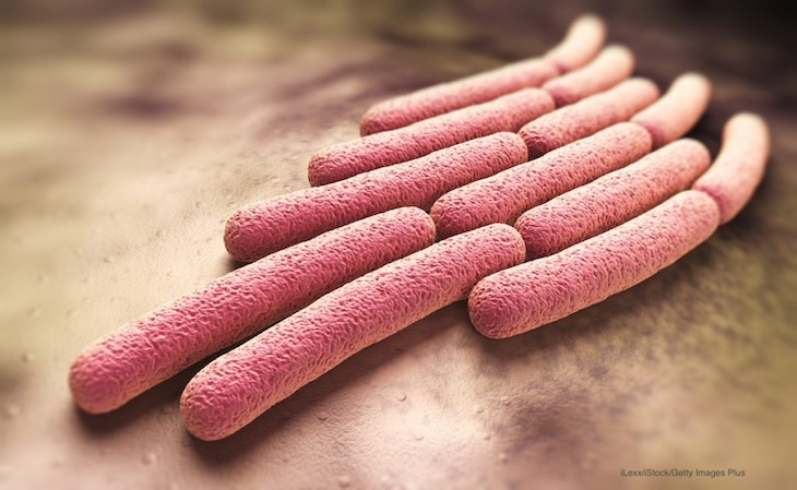 Brazoria County Shigella Outbreak Sickens Unknown Number in Texas
