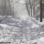 USDA Offers Food Safety Tips for Snow Storms